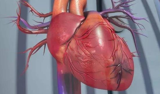 哪些人易患心肌梗死?心肌梗死怎么治疗?