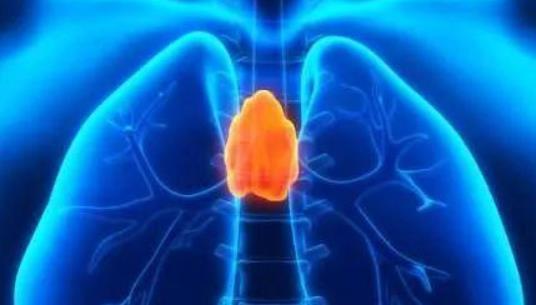 胸腺囊肿与胸腺瘤区别,胸腺囊肿做什么检查?