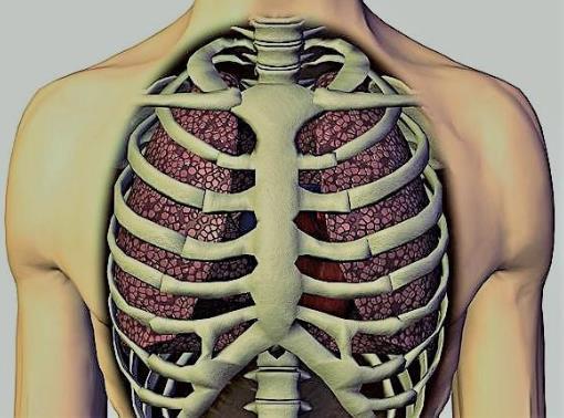 软骨炎是怎么引起的?软骨炎能好吗