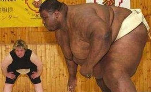 世上最重相扑选手 曼尼・亚伯勒重达652斤