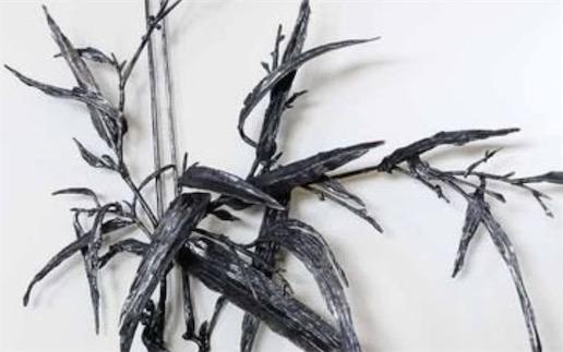 中国独有的画种 清朝康熙年间铁匠汤鹏发明的铁画