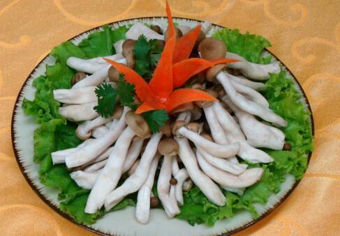 哺乳期可以吃蟹味菇吗?吃蟹味菇的禁忌