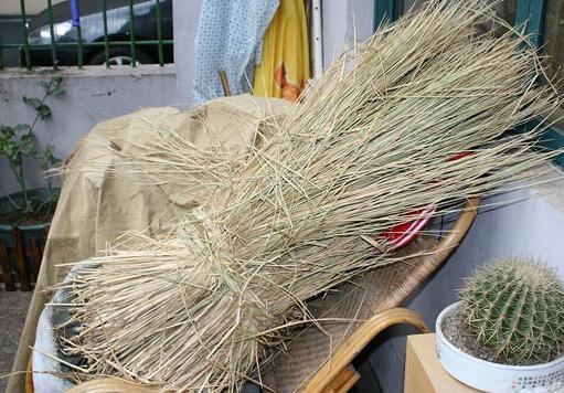 引起胆囊炎的原因-小麦秆代茶饮治胆囊炎