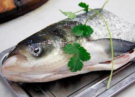 食用青根鱼的注意事项-青根鱼的营养价值