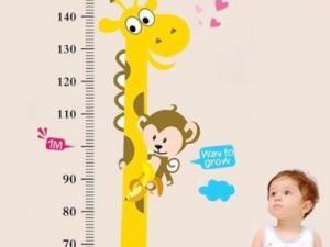 婴儿身高体重头围对照表-婴儿身高的测量方法