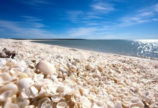 在澳大利亚、加勒比海的圣巴泰勒米岛、杰弗里斯湾,南非和佛罗里达的萨尼伯尔岛,都有这种海滩。大量海洋生物、强大的水流以及出人意料的飓风汇聚,经过几千年的变迁,海滩最终成为一个无数贝壳集结的世界。虽然没有荧光海滩那么五彩缤纷,到那时贝壳海滩却是世界上贝壳最多的地方,也是颇受旅游者的喜爱。 三、玻璃海滩
