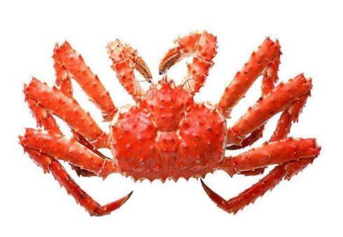 世界最贵十种蟹排行榜,阿拉斯加帝王蟹体型大,俄罗斯帝王蟹鲜美
