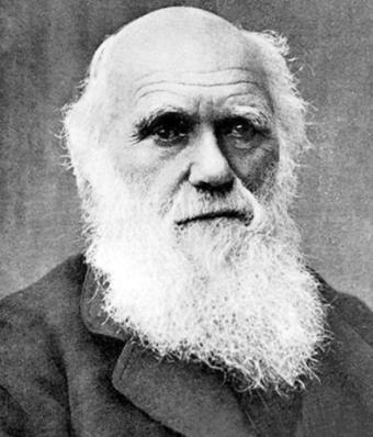 全球十大生物学家排行榜,达尔文是进化论的奠基人、林奈是生物学家