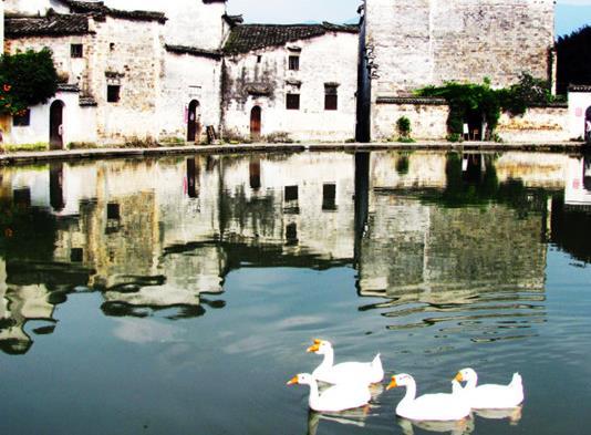 十大比较适合一个人安静散心的地方景点推荐,丽江、沪沽湖让你享受自然的洗礼(图7)