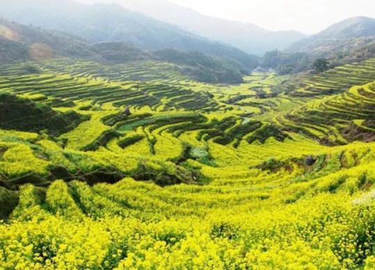 十大比较适合一个人安静散心的地方景点推荐,丽江、沪沽湖让你享受自然的洗礼(图10)