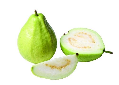 番石榴的功效与作用-番石榴的营养价值