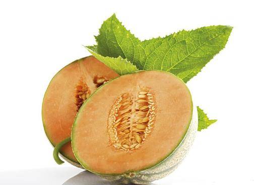 哈密瓜的营养价值-哈密瓜上火吗?