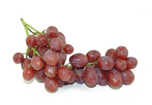 红提的功效与作用-红提的种植技术