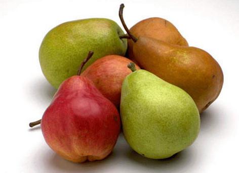 香蕉梨的种植技术-香蕉梨的功效与作用
