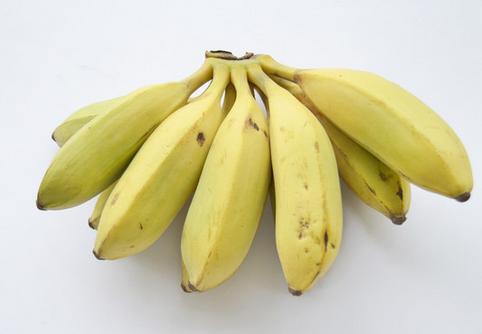 小米蕉的种植技术-小米蕉的功效与作用