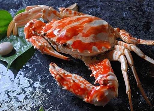 三疣梭子蟹的做法-三疣梭子蟹的营养价值