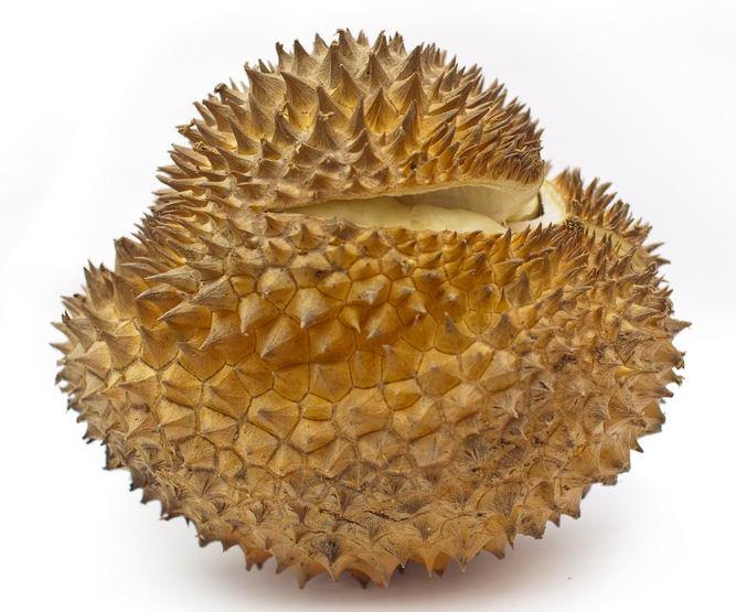吃榴莲有什么好处 榴莲的功效与作用,榴莲的营养价值图片