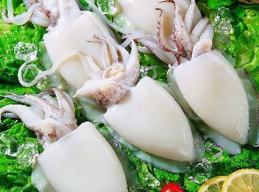 脊骨(中药名为海螵蛸)均可入药