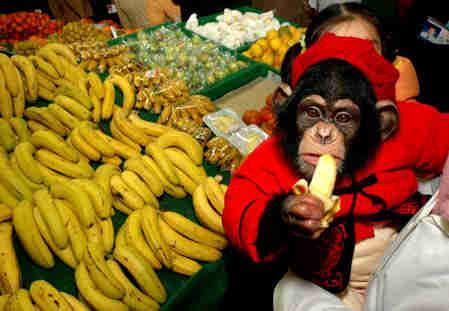 如何挑选香蕉?什么样的香蕉好吃
