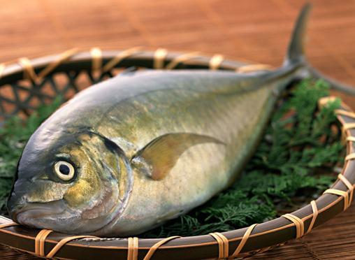 如何挑选新鲜的鱼?挑选新鲜鱼的方法