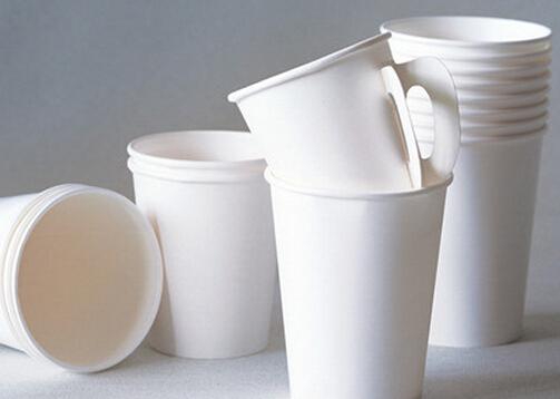 如何选购纸杯?使用一次性纸杯的注意事项