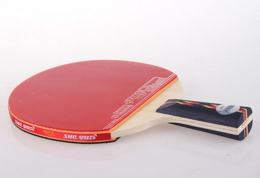 乒乓球拍的简介-乒乓球拍的选择