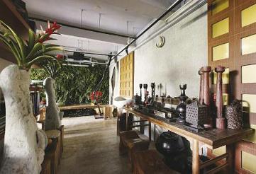 家居布置-室内植物摆放