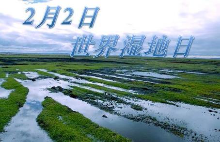 2月2日是什么节日?世界湿地日是几月几日