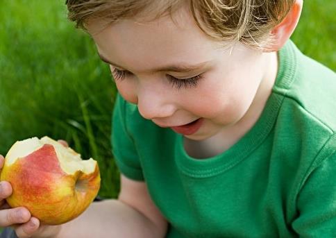 宝宝吃苹果的做法