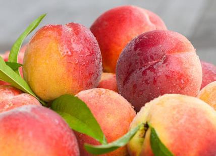 桃子吃多了会怎么样?桃子吃多了上火吗