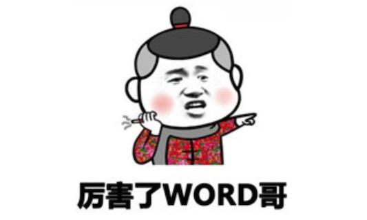 word哥是什么意思什么梗 word哥等于我的哥