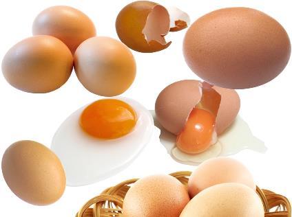鸡蛋怎么吃最有害?鸡蛋食用不当补品变毒品
