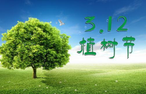 植树节是几月几日?今天是什么节日?植树节的由来和意义
