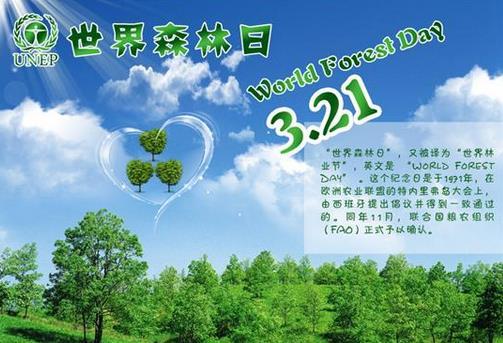 3月21日是什么节日?世界森林日的来历和意义