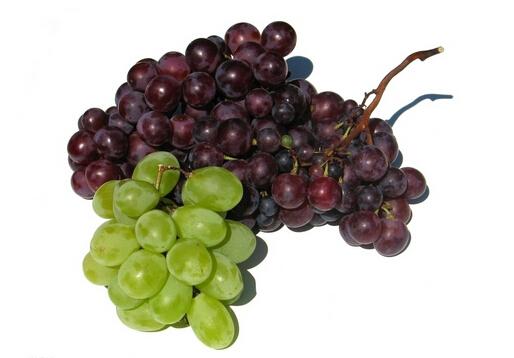 葡萄怎么洗?葡萄干怎么吃最有营养