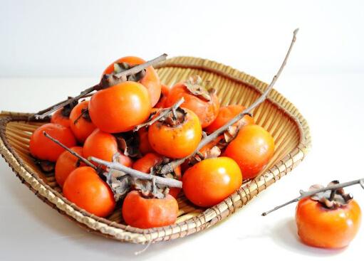 吃柿子的好处和坏处_