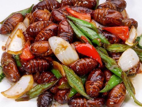 蚕蛹的营养价值-吃蚕蛹的好处