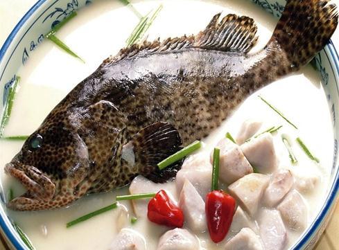石斑鱼的营养价值-石斑鱼的食疗作用-石斑鱼炖芋艿