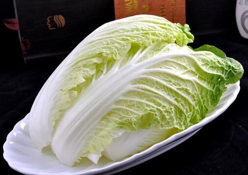大白菜要先洗后切-大白菜的功效 大白菜的功效 1、白菜含有丰富的粗纤维,不但能起到润肠、促进排毒的作用又刺激肠胃蠕动,促进大便排泄,帮助消化的功能。对预防肠癌有良好作用。 2、秋冬季节空气特别干燥,寒风对人的皮肤伤害极大。白菜中含有丰富的维生素C、维生素E,多吃白菜,可以起到很好的护肤和养颜效果。 3、美国纽约激素研究所的科学家发现,中国和日本妇女乳腺癌发病率之所以比西方妇女低得多,是由于她们常吃白菜的缘故。白菜中有一些微量元素,它们能帮助分解同乳腺癌相联系的雌激素。 大白菜是冬季餐桌上的常客,有&ld