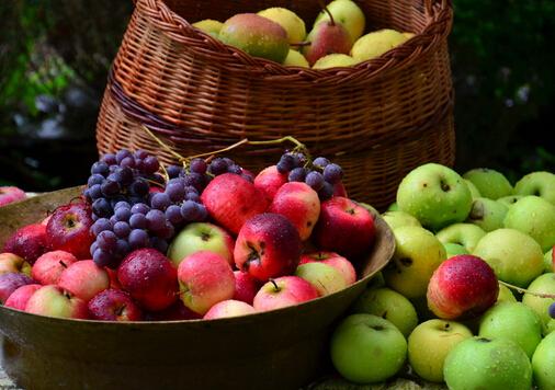 吃荔枝可治療腎虧夢遺-男人吃什麼補腎養精?