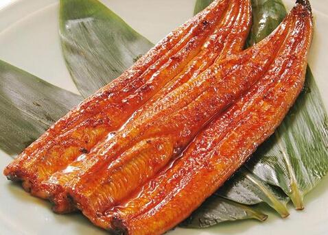 【食材】鳗鱼多少钱一斤鳗鱼如何挑选