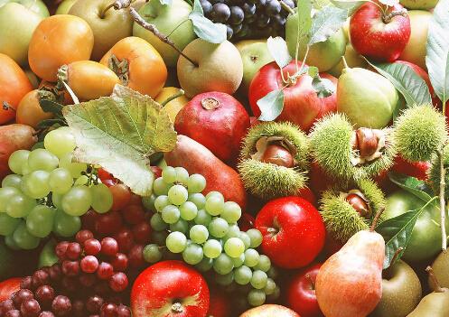 v空腹空腹不时期吃常识?-360水果网啥能燃烧6吃脂肪图片