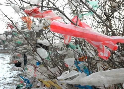 塑料袋对人类健康和环境有怎样的危害
