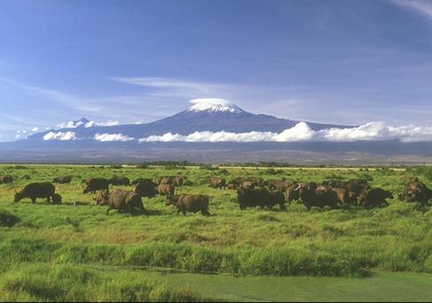 世界上最大的高原是什么?巴西高原的气候特征