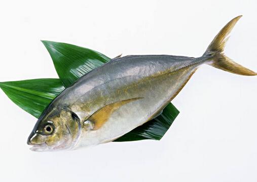 鱼卡在喉咙里怎么办?取喉咙鱼刺技巧