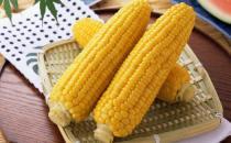 吃玉米的好处有哪些?多吃玉米可保护眼睛
