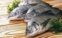 鱼的哪些部位比较有营养?洗鱼有什么技巧?