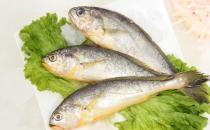 吃黄花鱼有哪些好处?