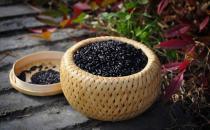 黑芝麻营养和药用价值
