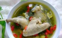 养生鸽子汤 鸽子汤的营养功效